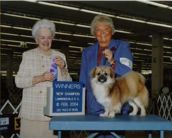 Pictured:Respected AKC Judge, Mrs. Dorothy Welsh, Handler, Ann Terry, and our NEW Ch Gin-Tai's The First Edition, 'EDDIE'