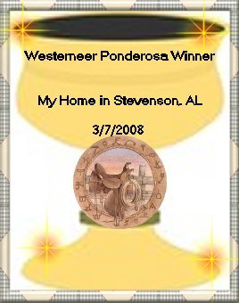 Thanks to Lei Lani, our 'WESTERNEERS TL', for these great awards!